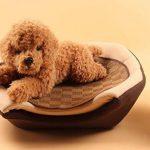 2 EN 1 Niche de Chien Maison Lit Panier avec Coussin Amovible pour Chien Chat de la marque OMGO image 1 produit