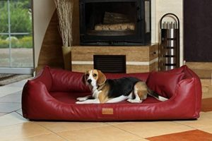 Canapé chien simili cuir, le top 7 TOP 3 image 0 produit