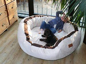 Canapé pour chien grande taille ; acheter les meilleurs modèles TOP 10 image 0 produit