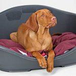 Corbeille chien plastique - top 12 TOP 3 image 2 produit
