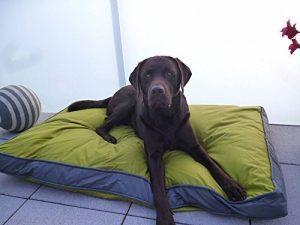 Coussin d'extérieur pour chien, 120 x 80 cm XXL, vert, matériau robuste et étanche à l'eau de la marque SAUERLAND image 0 produit