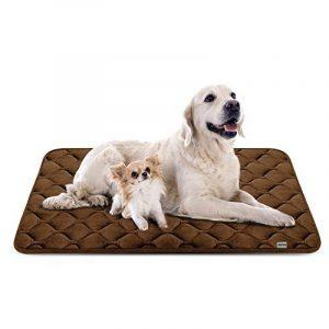 Coussin pour chien lavable, les meilleurs produits TOP 9 image 0 produit