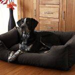 Knuffelwuff Lit pour chien Dreamline M - L 85cm x 63cm Marron de la marque Knuffelwuff image 1 produit
