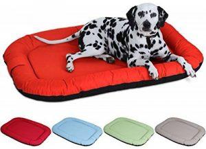 Knuffelwuff Summer Lucky Lit pour chien pour intérieur et extérieur XXL 120 x 85cm Orange Hydrofuge de la marque Knuffelwuff image 0 produit