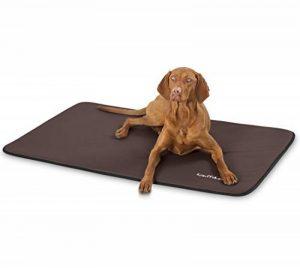 Knuffelwuff Tapis pour chien déperlant en similicuir Cheyenne Noir Ovale XL 105 x 73cm de la marque Knuffelwuff image 0 produit