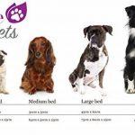 Lit chien, Lit chat, Panier pour chien, Coussin pour chien, Panier pour chat, Corbeille pour chat, Lavable, Purple-Pets Traditionnel (Bleu Ciel, Moyen) de la marque Purple Pets image 6 produit