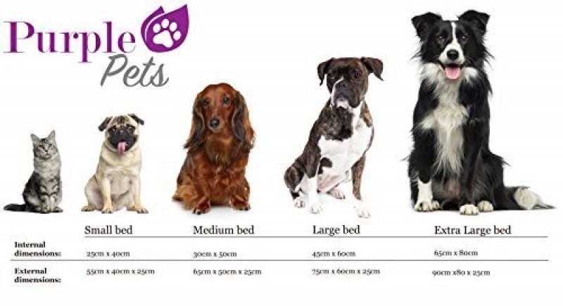 coussin pour chien original top 14 pour 2018 meilleurs. Black Bedroom Furniture Sets. Home Design Ideas