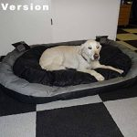 Lit pour chien xxl : faire des affaires TOP 3 image 4 produit
