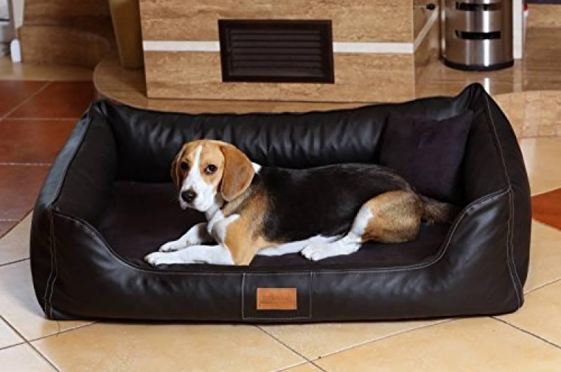 panier chien cuir pour 2018 faire le bon choix meilleurs coucouches. Black Bedroom Furniture Sets. Home Design Ideas