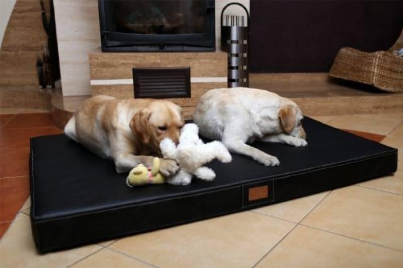 The Dogs Balls Le Lit Du Chien Lit Lavable En Mousse Impermeable A