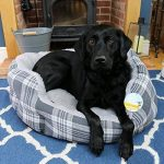 Me & My Lit à Carreaux Gris Peluche pour Animaux Domestique - Choix de Taille de la marque Me & My Pets image 1 produit
