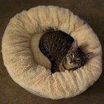Me & My Lit Beignet Super Doux pour Chats, Chiots et Petit Chiens de la marque Me & My image 3 produit