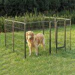 Panier luxe pour chien, votre top 14 TOP 6 image 2 produit