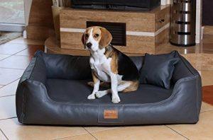 Panier orthopédique pour chien rectangulaire - notre top 13 TOP 2 image 0 produit