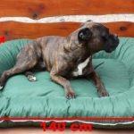 Panier pour chien 140x95x17 couverture déhoussable vert de la marque ETS image 4 produit