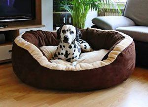 Panier pour chien moelleux, faire une affaire TOP 4 image 0 produit