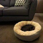 Panier pour petit chien, notre top 14 TOP 1 image 1 produit
