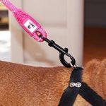 Panier rose pour chien - faites des affaires TOP 3 image 4 produit