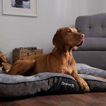 Scruffs panier chien - top 12 TOP 1 image 5 produit