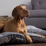 Scruffs panier chien - top 12 TOP 1 image 6 produit