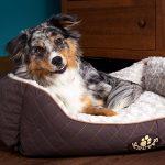 Scruffs panier chien - top 12 TOP 3 image 4 produit