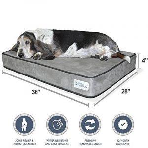 Taille panier pour labrador : comment acheter les meilleurs modèles TOP 2 image 0 produit