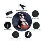 Tapis chien grand modèle ; top 13 TOP 4 image 2 produit