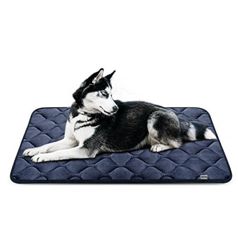 coussin orthop dique chien votre top 14 pour 2018 meilleurs coucouches. Black Bedroom Furniture Sets. Home Design Ideas