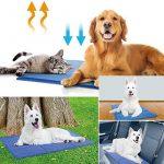 Tapis frais pour chien ; faire des affaires TOP 4 image 6 produit