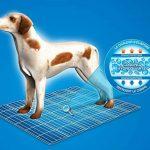 Tapis rafraichissant pour chien - comment trouver les meilleurs produits TOP 4 image 6 produit