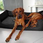 tierlando G5-L-03 Lit Orthopédique Pour Chien GOOFY VISCO Anti-cheveux Similicuir Canapé pour chien Panier pour chien Gr. XL 120cm Noir Ortho de la marque tierlando image 6 produit