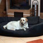 tierlando Lit pour chien PHILIP Canapé pour chien - Similicuir - XXL 140cm - Noir - Dogue allemand, Ridgebacks Ph5-LL-03 de la marque tierlando image 1 produit