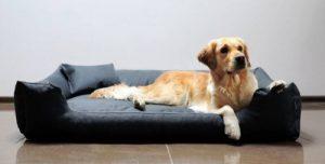 tierlando M4-C-02 lit pour chien MORITZ de en CODURA robuste Canapé pour chien Panier pour chien Taille L 100cm GRAPHITE/GRIS de la marque tierlando image 0 produit