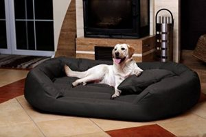 tierlando® S5-02 Sammy canapé-lit robuste pour chien taille XXL 140cm graphite anthracite de la marque tierlando image 0 produit