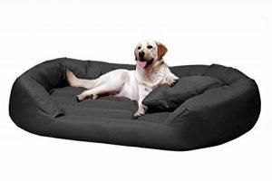 tierlando S6-02 SAMMY robuste canapé-lit pour chien Taille XXXL 170cm GRAPHITE de la marque tierlando image 0 produit