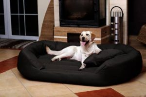 tierlando S6-03 SAMMY robuste canapé-lit pour chien Taille XXXL 170cm Noir de la marque tierlando image 0 produit
