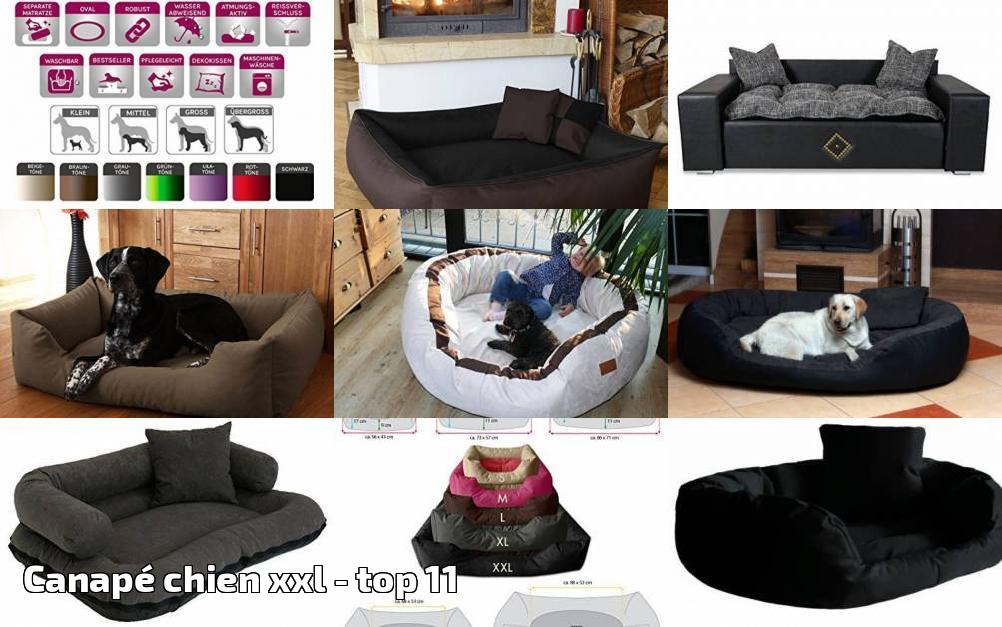canap chien xxl pour 2018 top 11 meilleurs coucouches. Black Bedroom Furniture Sets. Home Design Ideas