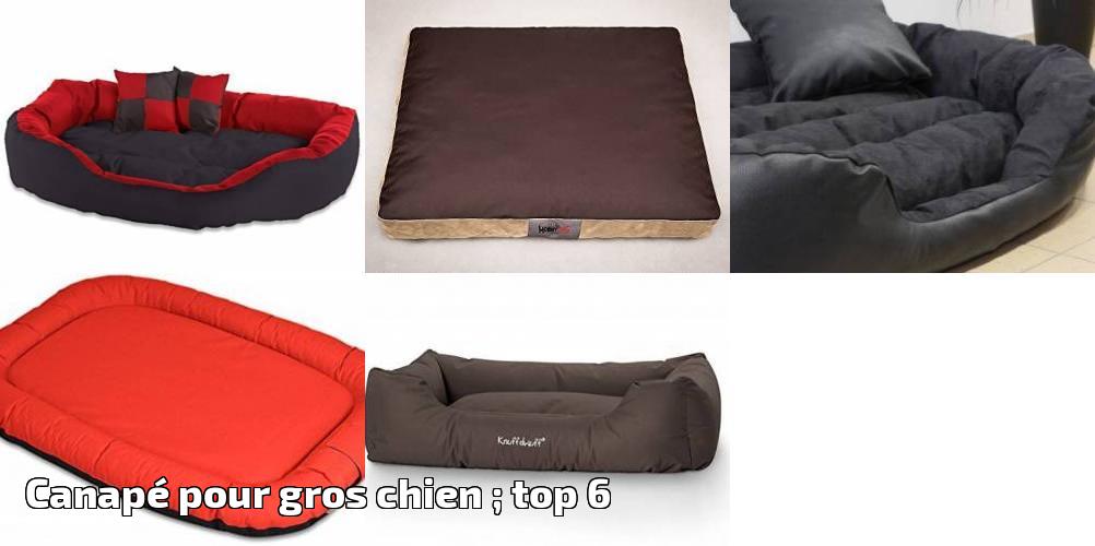 canap pour gros chien top 6 pour 2019 meilleurs. Black Bedroom Furniture Sets. Home Design Ideas