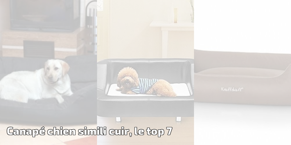 Canap chien simili cuir le top 7 meilleurs coucouches for Reparation canape cuir griffe chat