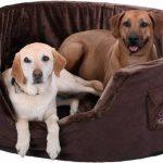 Henry Lit pour chien en mousse 5 cm XXXL 120 x 100cm - Marron de la marque Knuffelwuff image 0 produit