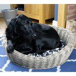 Panier osier chien animalerie ; les meilleurs modèles TOP 5 image 1 produit