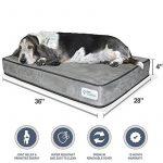 Petfusion Serenitylounge Lit pour chien (Large, 91x 71x 10cm). Premium en daim Housse W/solide 10cm mousse à mémoire de forme. couvertures de remplacement également disponible de la marque PetFusion image 0 produit