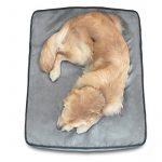 Petfusion Serenitylounge Lit pour chien (Large, 91x 71x 10cm). Premium en daim Housse W/solide 10cm mousse à mémoire de forme. couvertures de remplacement également disponible de la marque PetFusion image 2 produit